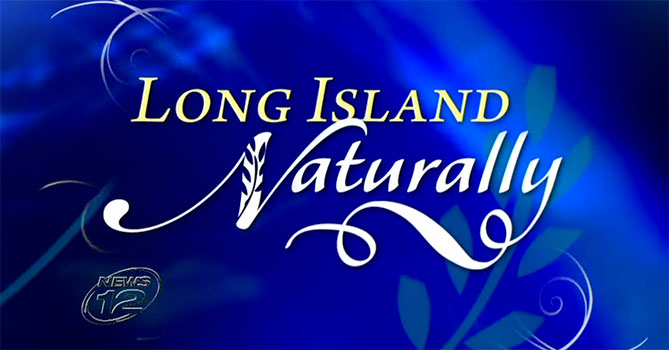Dec 24, 2014: Northeast Natural Sales Founder Linda Stasiak featured on News12 : Long Island Naturally.